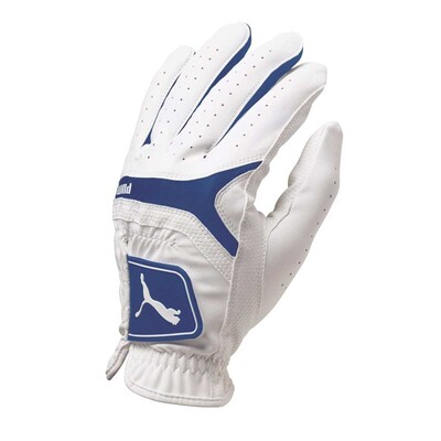 Puma Golf Glove Synthetic Leather White Surf the Web AW16