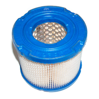 Image of Briggs & Stratton Air Filter fits 243400, 294447, 295440 p/n 393957S
