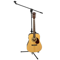 Microphone and Guitar Stand