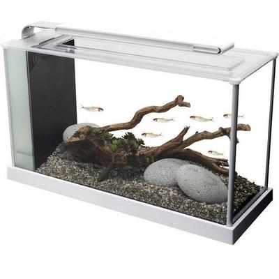 Fluval Spec Aquarium - Gloss White