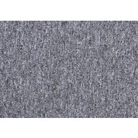 Paragon Vital Carpet Tile 6011