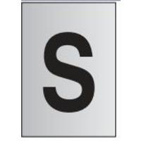 Metal Effect PVC Letter S