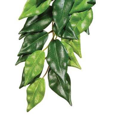 Exo-Terra Silk Ficus Plant