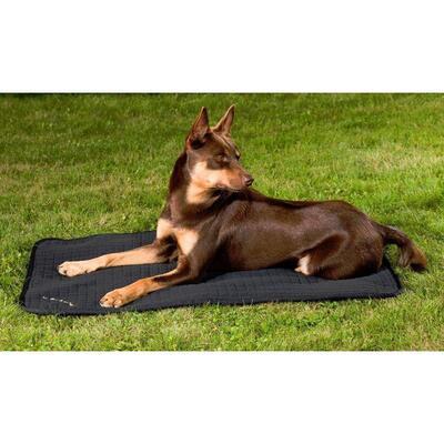Back on Track® Welltex™ Allround Canine / Dog Mattress - Black 55cm x 38cm