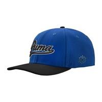 Puma Golf Caps