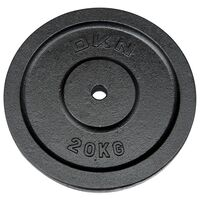 Image of DKN Cast Iron Standard Weight Plates - 1 x 20kg