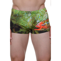 Bruno Banani Chameleon Swim Short