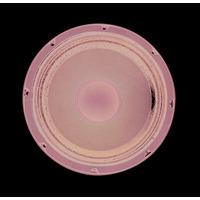 Cobra Audio 150 Watt Speaker 10 Inch