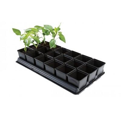 18 x 9cm Pot Vegetable Growing Tray