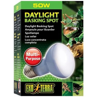 Exo Terra Daylight Basking Spot