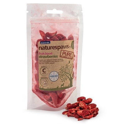 Ancol Naturespaws Small Animal Dried Fruit Treats