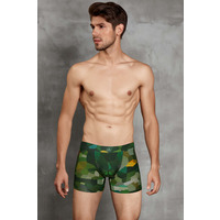 N2n N11 Net Pouch Sheer Brief ...